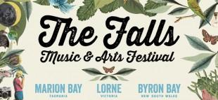 Falls Festival Crowd Crush - Incident Response
